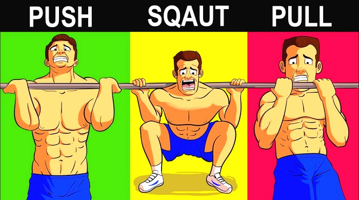 A Selection Of The Best Muscle Building Exercises Anymuscle Com